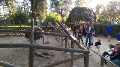 zoo en huelva